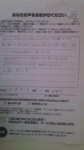 DSC_0881 (2)
