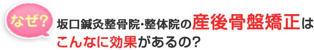 阿南・小松島坂口鍼灸整骨院・整体院 産後骨盤矯正の効果